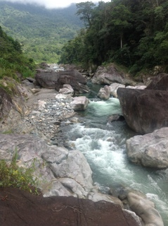 la ceiba honduras real estate cangrejal river