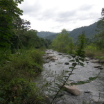 waterfront cangrejal river property for sale