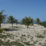 Private, secluded beachfront east La Ceiba