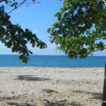 Central America Real Estate Beachfront